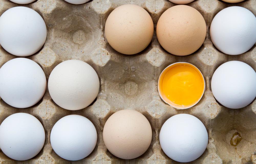 Белое или коричневое: есть ли отличия у куриных яиц разного цвета? • INMYROOM FOOD