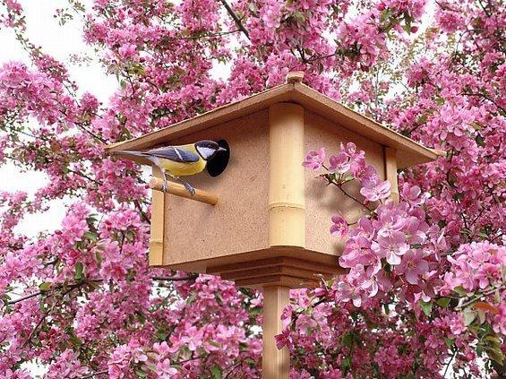 Фотография:  в стиле , Декор интерьера, Декор дома, Обои, Стены, Цветы, Фотообои – фото на InMyRoom.ru
