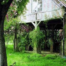 Фотография: Ландшафт в стиле , Дом, Дома и квартиры, Прованс – фото на InMyRoom.ru