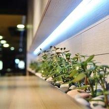 Фотография: Декор в стиле Современный, Эклектика, Эко, Декор интерьера, Мебель и свет, освещение – фото на InMyRoom.ru