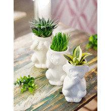 Горшок для растений Экочеловеки eco молчун