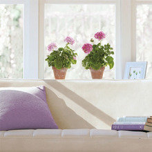 Фотография:  в стиле Современный, Балкон, Декор интерьера, Дом, Декор дома – фото на InMyRoom.ru