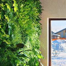 Фото из портфолио Фитостены RaStenia – фотографии дизайна интерьеров на INMYROOM