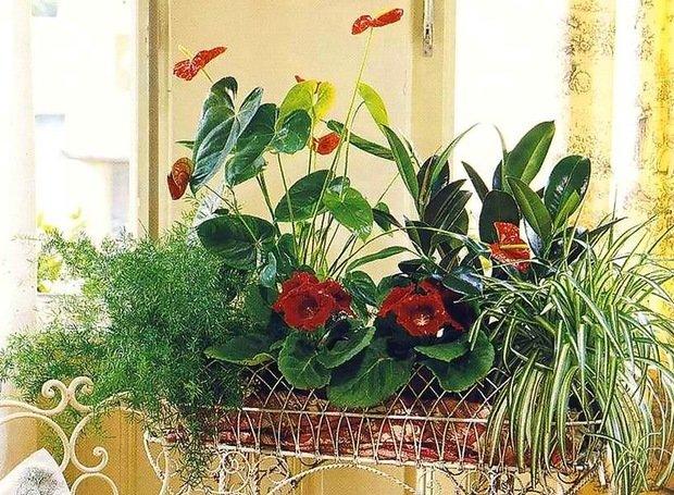 Фотография: Флористика в стиле , Декор интерьера, Comptoir de Famille, Country Corner, Декор дома, Интерьерная Лавка, Вазы – фото на InMyRoom.ru