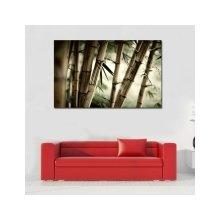 Дизайнерская картина на холсте: Стебли бамбука