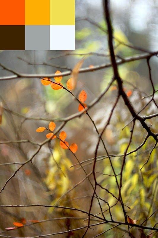 Фотография:  в стиле , Советы, Наталья Симоненко, как самостоятельно оформить интерьер, как сделать мудборд самостоятельно – фото на InMyRoom.ru