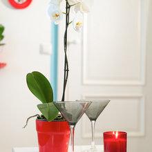 Фотография: Аксессуары в стиле Кантри, Квартира, Дома и квартиры – фото на InMyRoom.ru