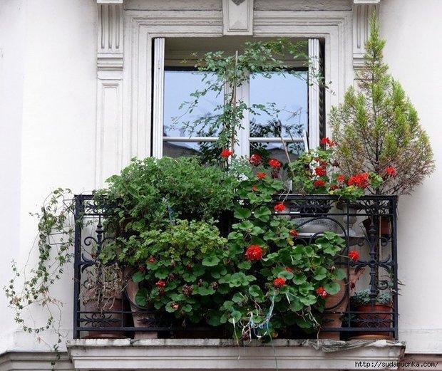 Фотография: Ванная в стиле Классический, Эклектика, Балкон, Квартира, Аксессуары, Мебель и свет, Терраса, Советы, Ремонт на практике, бюджетное обновление балкона, экономичный ремонт на балконе – фото на InMyRoom.ru