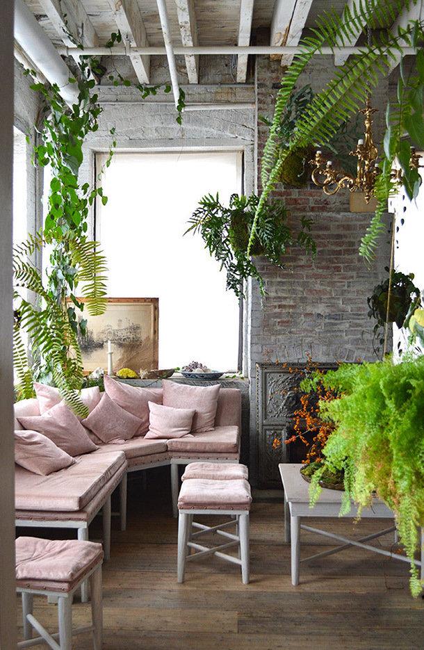 Фотография: Гостиная в стиле Эко, Декор интерьера, Зеленый, растения в горшках в интерьере, комнатные растения для ванной комнаты – фото на INMYROOM