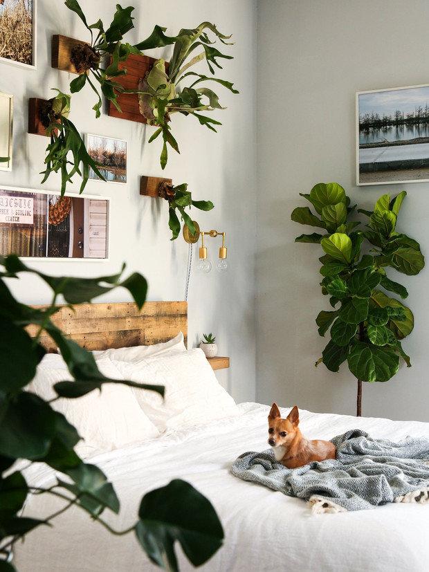 Фотография: Спальня в стиле Эко, Декор интерьера, дерево в интерьере, тренды 2019 – фото на INMYROOM