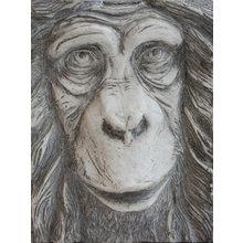 Панно Огненная обезьяна (белое)