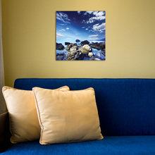 Фото из портфолио Картины – фотографии дизайна интерьеров на InMyRoom.ru