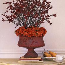 Фотография: Флористика в стиле , Декор интерьера, Декор дома, Марта Стюарт – фото на InMyRoom.ru