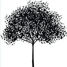 """Декоративная картина """"Черно-белые деревья"""""""