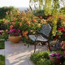 Фото из портфолио цветы – фотографии дизайна интерьеров на INMYROOM