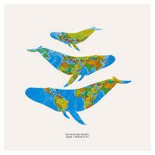 Картина (репродукция, постер): Les baleines bleues dans l'ocean bleu
