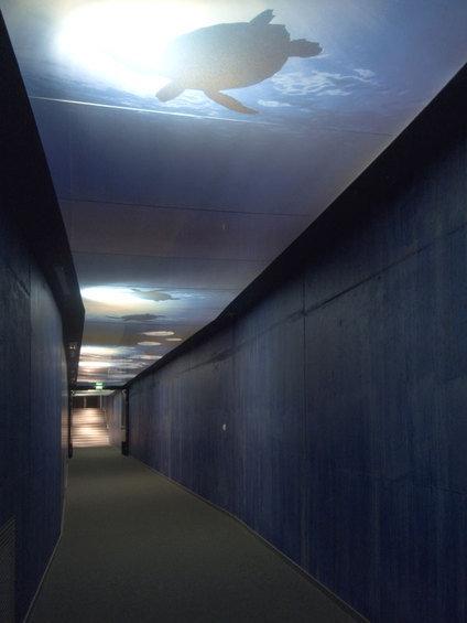 Фотография: Прихожая в стиле Минимализм, Дизайн интерьера, Потолок – фото на INMYROOM