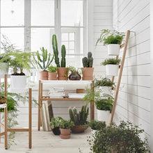 Фотография: Балкон в стиле Скандинавский, Декор интерьера, Советы, растения в интерьере, Vibe Life Technologies – фото на InMyRoom.ru