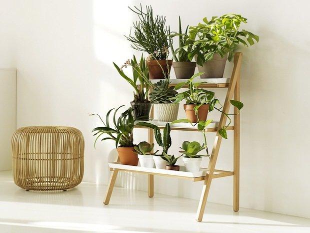 Фотография: Кухня и столовая в стиле Классический, Декор интерьера, Советы, растения в интерьере, Vibe Life Technologies – фото на InMyRoom.ru