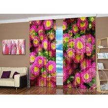 Дизайнерские шторы с фотопечатью: Астры