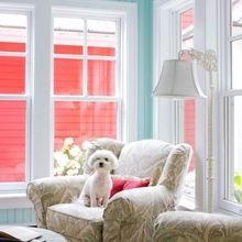 Фото из портфолио Dogs – фотографии дизайна интерьеров на INMYROOM