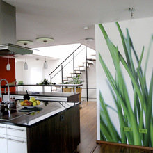 Фотография: Кухня и столовая в стиле Современный, Советы, фотообои в интерьере – фото на InMyRoom.ru