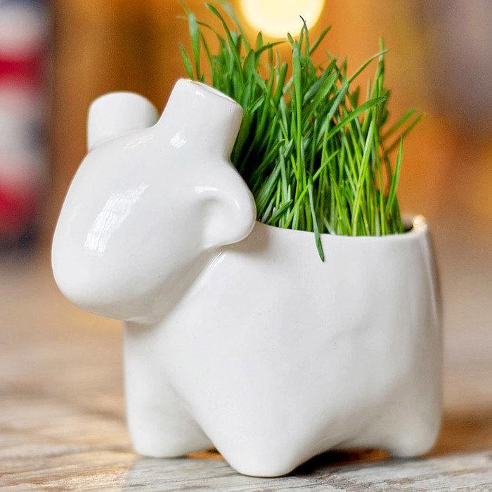 Набор для выращивания Экочеловеки eco овечка