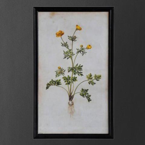 """Постер """"Желтый цветок"""""""