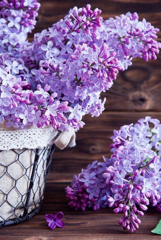 Фотография:  в стиле , Советы – фото на InMyRoom.ru