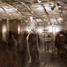 Фотография: Декор в стиле Современный, Эклектика, Дома и квартиры, Городские места, Советы – фото на InMyRoom.ru