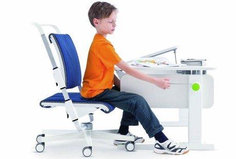 Продаётся комплект детской мебели Moll Champion