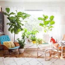 Фото из портфолио  Яркое пятно в интерьере - БИРЮЗОВЫЙ диван!!! – фотографии дизайна интерьеров на InMyRoom.ru