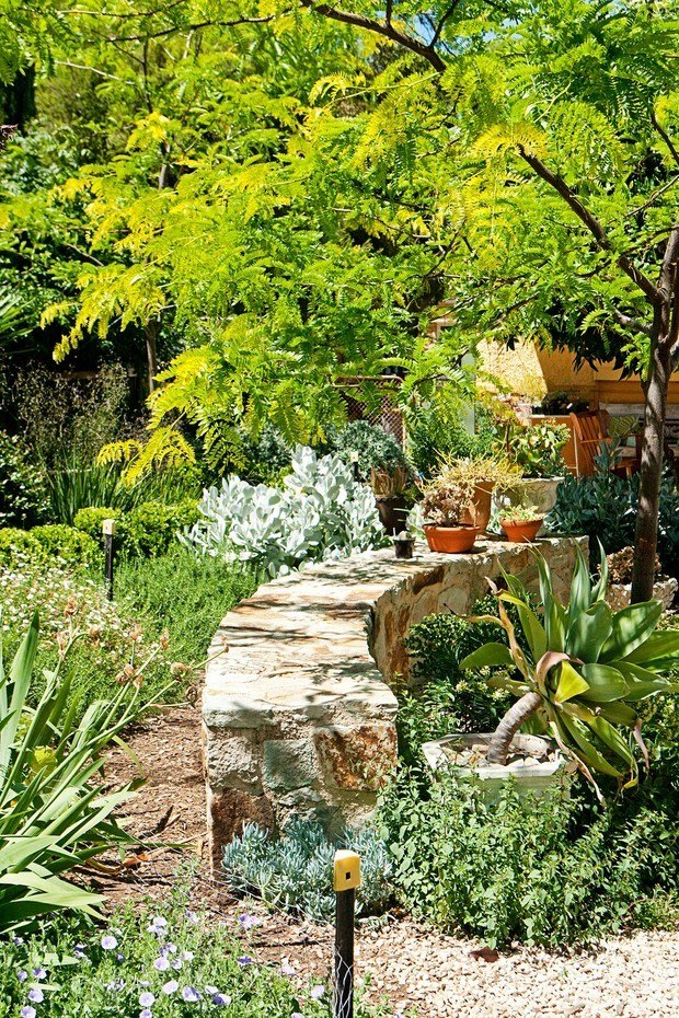 Фотография: Ландшафт в стиле , Сад, Дом и дача, растения – фото на INMYROOM