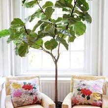 Фотография: Мебель и свет в стиле Кантри, Декор интерьера, Декор, Советы, Эко – фото на InMyRoom.ru
