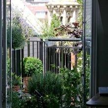 Фотография: Балкон в стиле Эко, Советы, Зеленый, Оксана Шабалина, овощи на балконе, сад пряных трав на балконе, вертикальное озеленение, что выращивать в тени, огород на балконе, мини-огород на балконе – фото на InMyRoom.ru