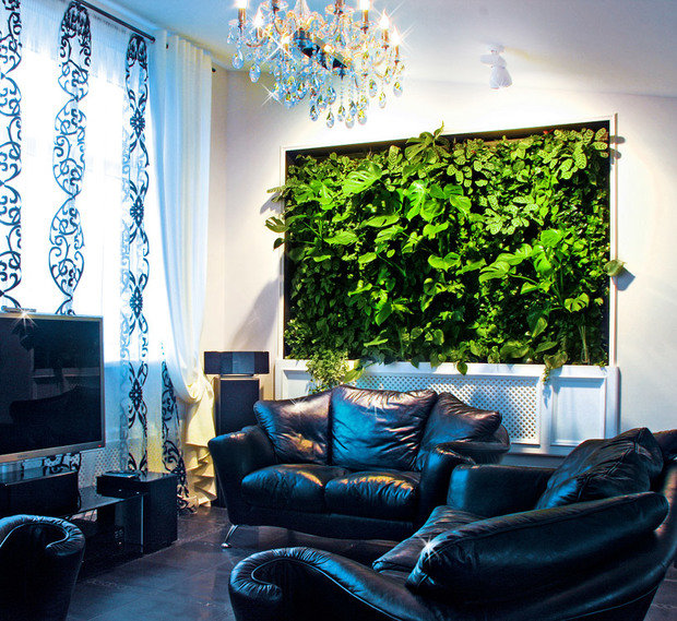 Фотография: Гостиная в стиле Современный, Квартира, Дома и квартиры, Фитостены – фото на InMyRoom.ru