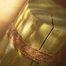 Настольная лампа / Ночник / Коллекция «Ветви и тени»