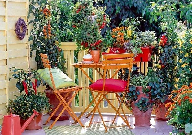 Фотография: Терраса в стиле Эко, Балкон, Квартира, Ландшафт, Дом и дача, огород на балконе, мини-огород на балконе, Leroy Merlin, Наталия Шушлебина – фото на INMYROOM