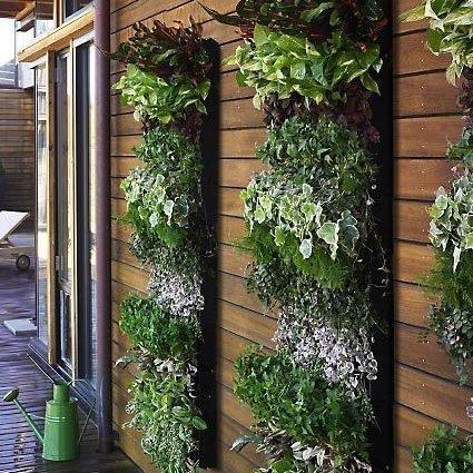 Фотография: Флористика в стиле , Балкон, Стиль жизни – фото на InMyRoom.ru