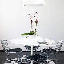 Фотография: Мебель и свет в стиле Хай-тек, Кухня и столовая, Декор интерьера, Декор дома, Цвет в интерьере, Белый, Камин, Бирюзовый – фото на InMyRoom.ru