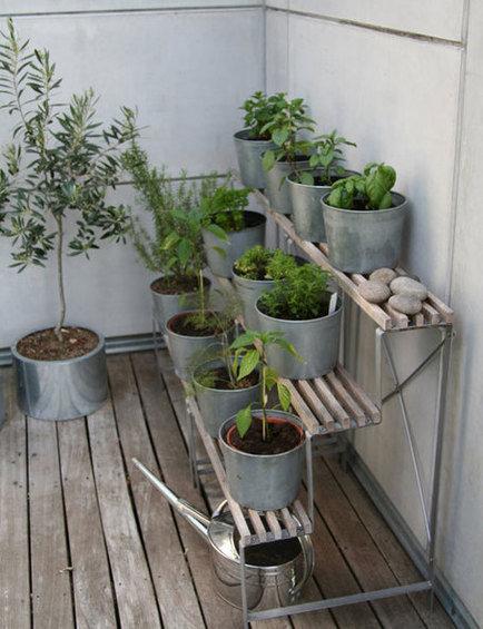 Фотография: Декор в стиле Эко, Балкон, Флористика, Стиль жизни – фото на InMyRoom.ru