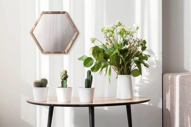 Фотография: Декор в стиле Современный, Скандинавский, Интервью, Woodi Furniture, Полина Балашова – фото на INMYROOM