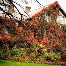 Фотография: Ландшафт в стиле , Декор интерьера, Дом, Стиль жизни – фото на InMyRoom.ru