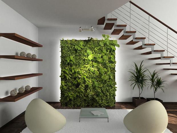 Фотография: Декор в стиле Эко, Декор интерьера, Советы, растения в интерьере, Vibe Life Technologies – фото на InMyRoom.ru