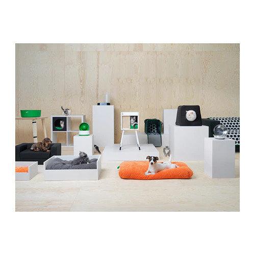 Фотография: Гостиная в стиле Минимализм, Скандинавский, Гид, ИКЕА, ИКЕА, животные дома – фото на INMYROOM