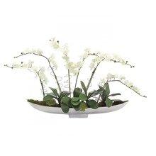 """Цветочная композиция """"Орхидеи на серебряном подносе"""""""