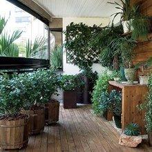 Фотография: Балкон в стиле Эко, Флористика, Стиль жизни – фото на InMyRoom.ru