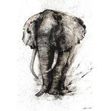 Картина (репродукция, постер): Слон-Мудрость - Хуа Тунан