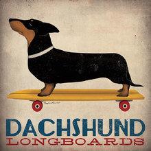 Картина (репродукция, постер): Dachshund Longboards - Райан Фоулер