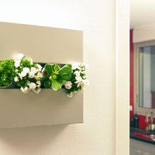 Фотография: Флористика в стиле , Декор интерьера, Офисное пространство, Ландшафт, Стиль жизни – фото на InMyRoom.ru